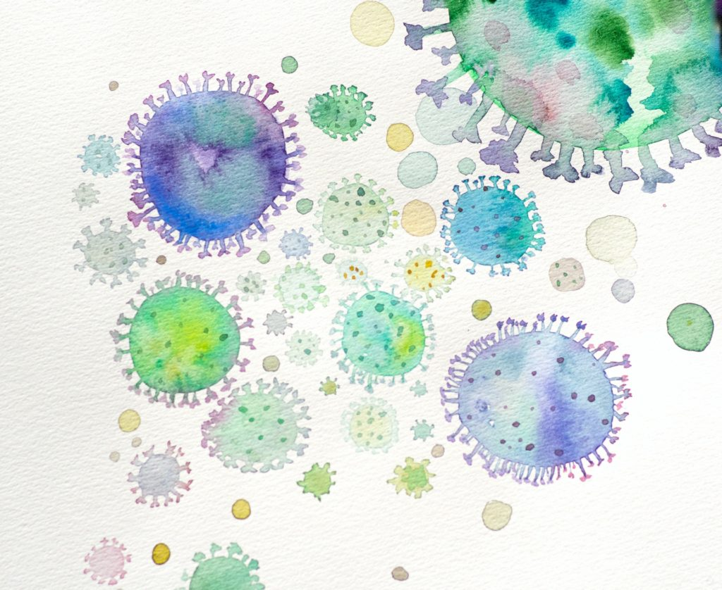Anerobic bacteria